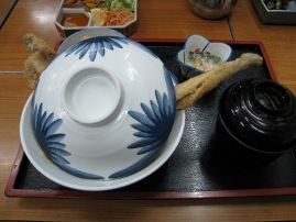 08kankakei_oosakaanago1.JPG