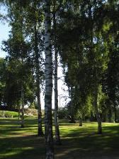 HEL_kaivopuisto1.JPG
