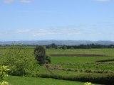 NZ_farmsight.jpg