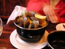 NZ_mussle.jpg