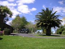 NZ_stayrotery.jpg