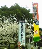 konpirakabuki_top.jpg