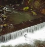 kurokawaonsen_river.jpg