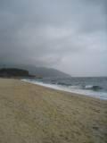 yakushima_05top.JPG