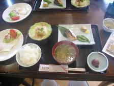 yakushima_manmarubf.JPG