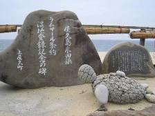 yakushima_ramsarl.JPG