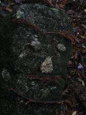 yakushima_stoneface.JPG
